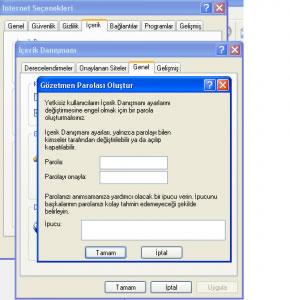 internet explorer'a şifre koyma