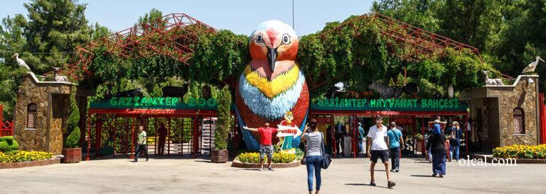 Gaziantep Hayvanat Bahçesi hakkında bilinmesi gerekenler